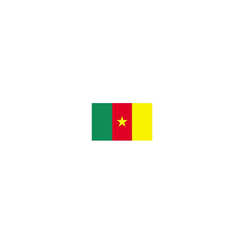Cameroon flag, buy, sale