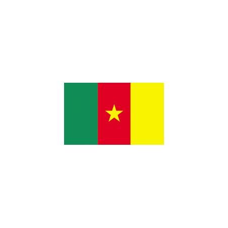 Cameroon flag,