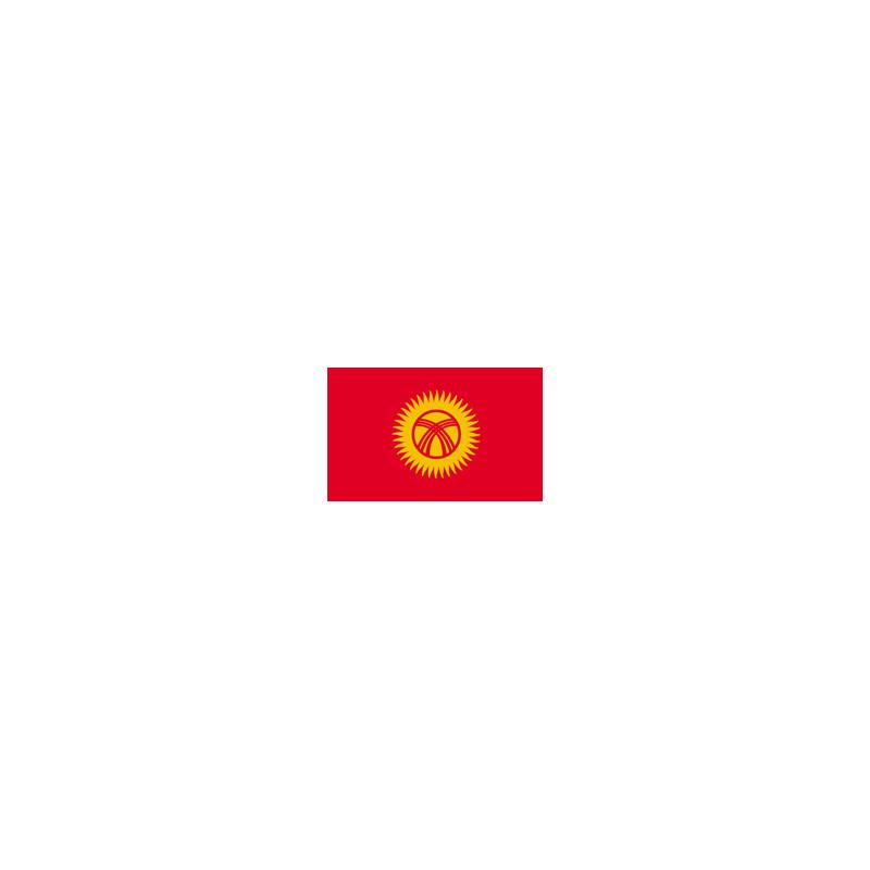 Kyrghyzstan flag