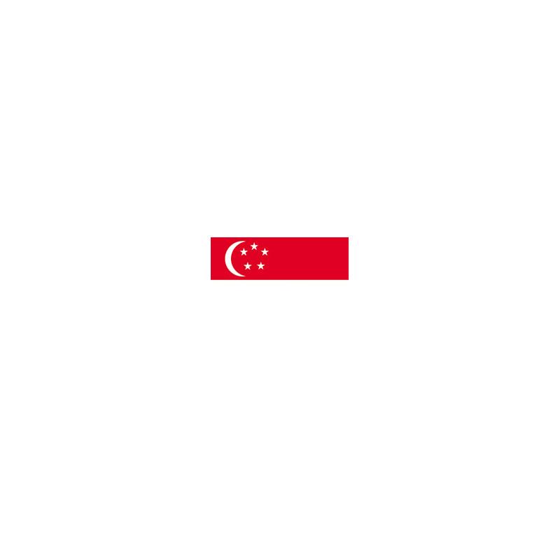 drapeau du Singapour