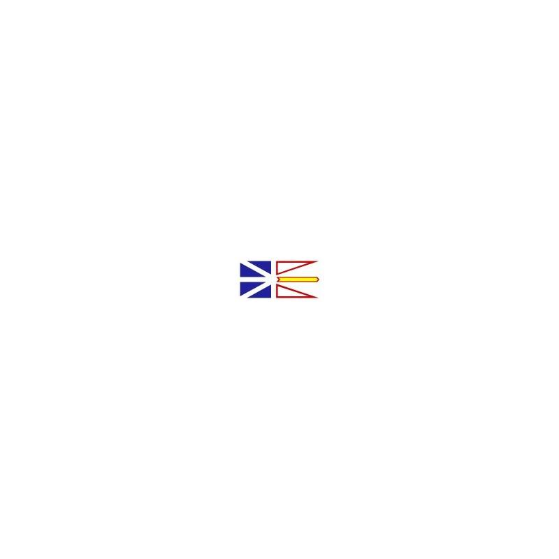 Ensemble drapeau Israel