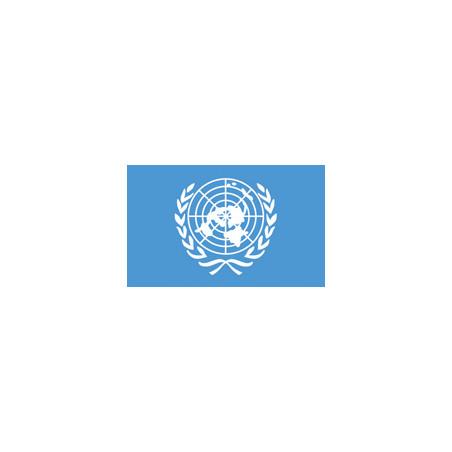 drapeau des nations unies